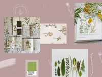 Moodboard #2 : Botanical Research