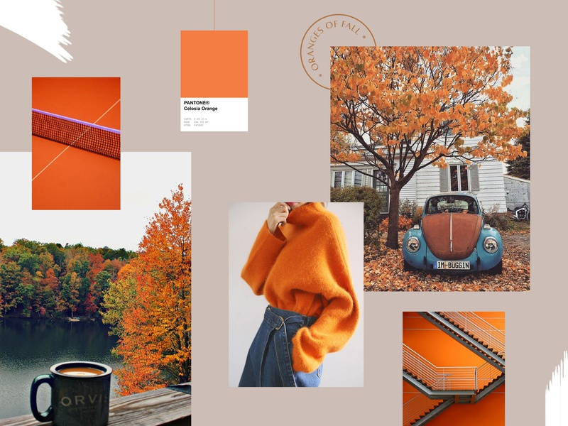 Moodboard #3 : Oranges of Fall pantone inspiration branding orange nature moodboard