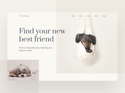 Sevendogs Website doggy dailyui webui web design web dog webdesign website design ui  ux uiux website uidesign user interface interaction design figma ux design design ui inspire ui design