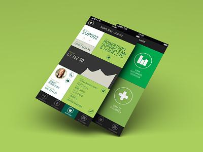 Accounting App 2 Screens accounting stats customers green flat grey