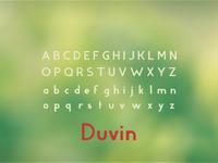 Duvin