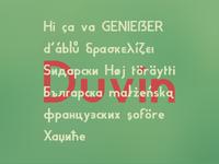 Duvin language support
