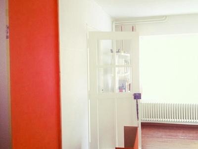 Renovating 2 branding color identity swiss office