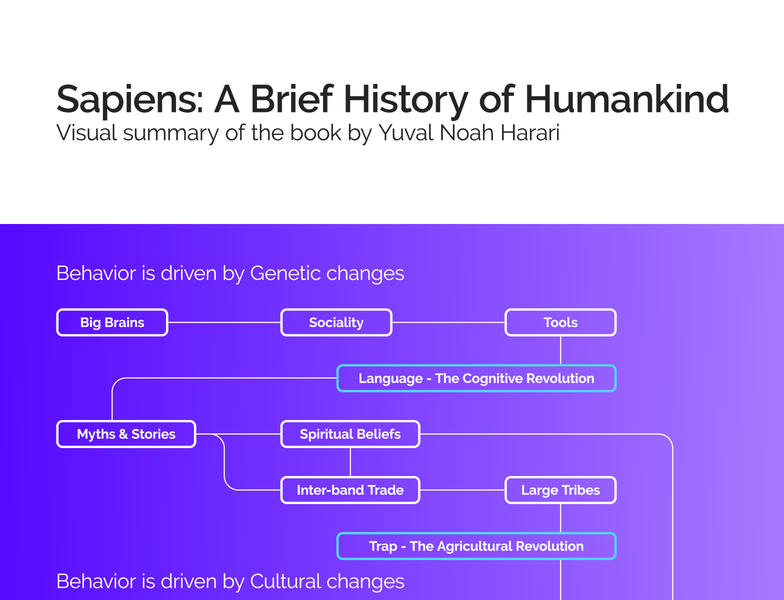 Sapiens: A Brief History of Humankind japan tokyo visualization infographic history flowchart sapiens
