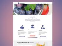 Blueberries Landing page