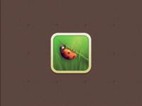 Vintage Ladybug