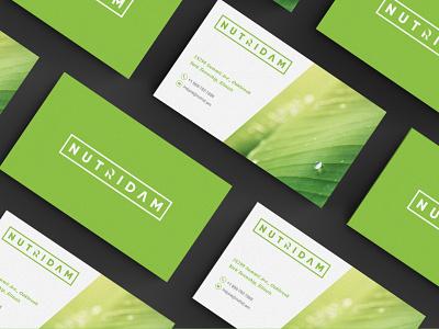 NutriDam Logo and Business Card leaf brand identity identity branding print identity nature nature logo vector flat minimal logo design businesscards design logo branding