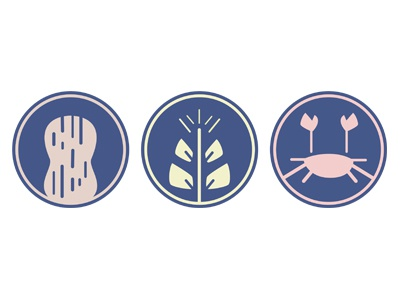 Allergens Icon System