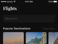 Travelisto dark   flights full