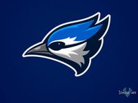 Blue Jays Concept 03
