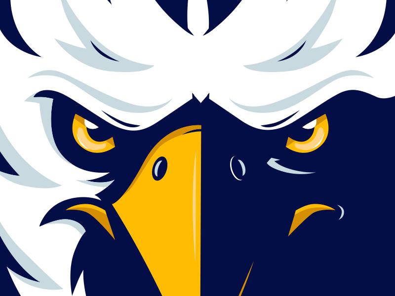 Eagle face bird animal wild eagle cartoon character mascot illustration vector