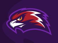 Hawk logo mascot