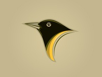 Cute black bird