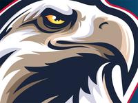 American Eagle Face