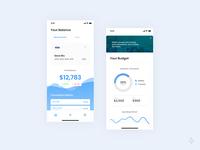 Mani: Money Management App