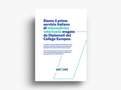 Vet2Vet - strategy & branding design color typography minimal identity design graphic design branding