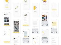 Mobile App UI Dashboards