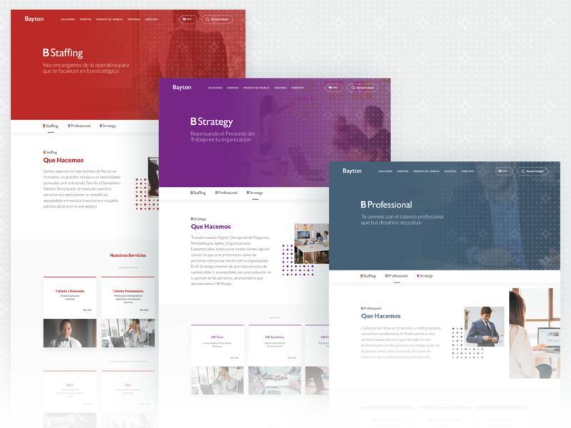 Bayton - Internal Templates template color indicius human resources design ux ui hr jobs group bayton argentina