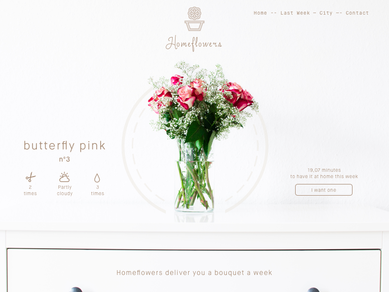 Try and test - Homeflowers concept - UI  delivery web butterfly shop flower ux ui