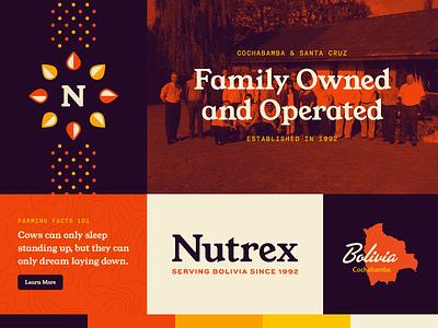 Nutrex Rebrand – Color Palette Exploration rebrand international south america bolivia agriculture farming logo logomark pattern logotype typography branding