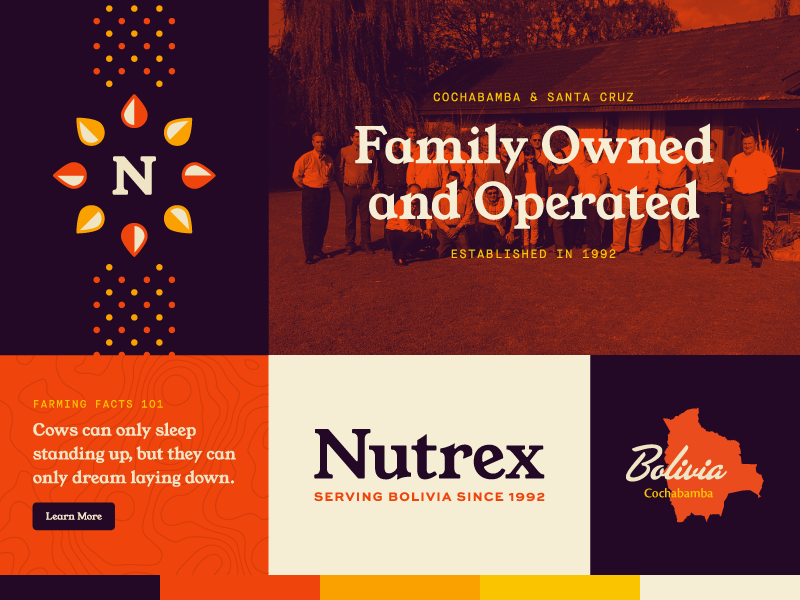 Nutrex Rebrand – Color Palette Exploration rebrand international south america bolivia agriculture farming logo logomark pattern logotype typography branding