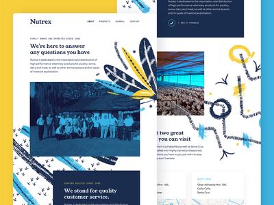 Nutrex Homepage Explorations