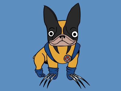 LeFrenchBulldog Wolverine  animation 2d character design dog