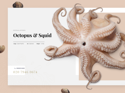 Octopus Product Page UI gallery hero header webdesign web ui product ecommerce food seafood fish octopus