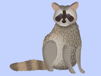 Raccoon Dribbble 4