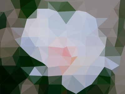 Triangulated rose processing delaunay rose