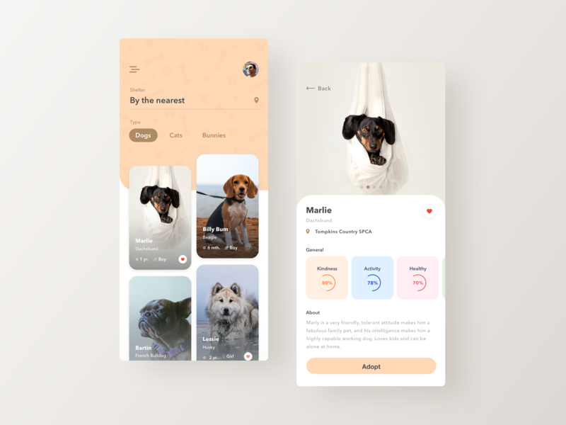 Better experience for pet adoption fireartstudio fireart minimal design ux ui app mobile