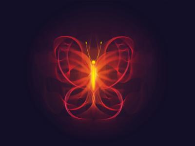 Fiery Butterfly vectorillustration adobeillustrator illustration