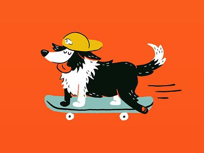 Sunday Punday No. 044: Boarder Collie skater hat skateboard dog procreate illustration
