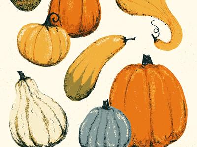 Sunday Punday No. 045: Oh my gourd squash gourds pumpkins autumn fall pun retro procreate vintage illustration