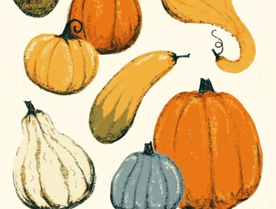 Sunday Punday No. 045: Oh my gourd squash gourds pumpkins autumn fall pun retro procreate vintage illustration