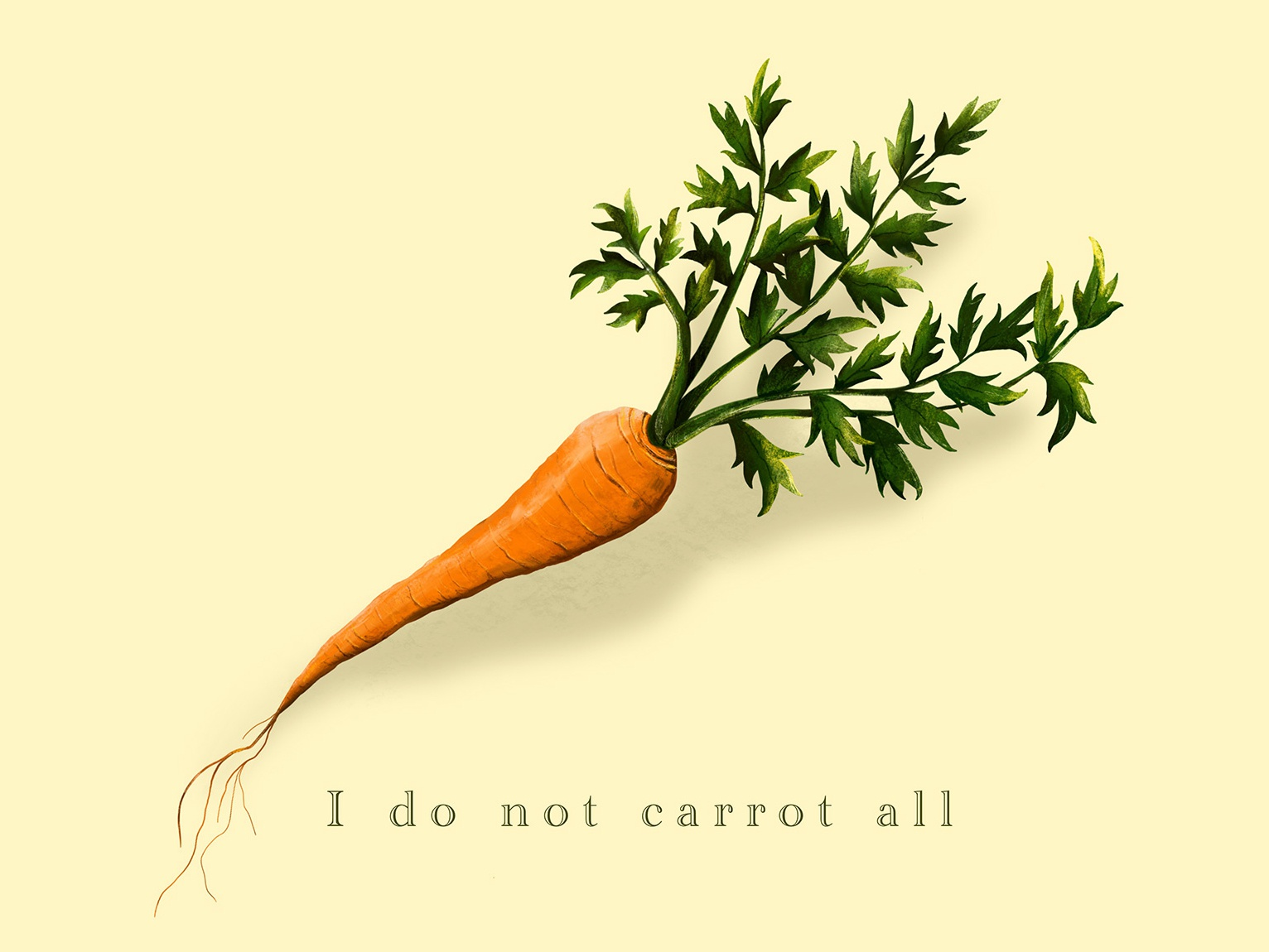 I do not carrot all procreate vegetable carrot pun food vintage type illustration