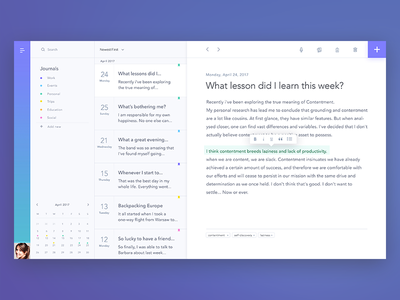 Journal timeline dashboard webapp diary text editor notes journal ux ui