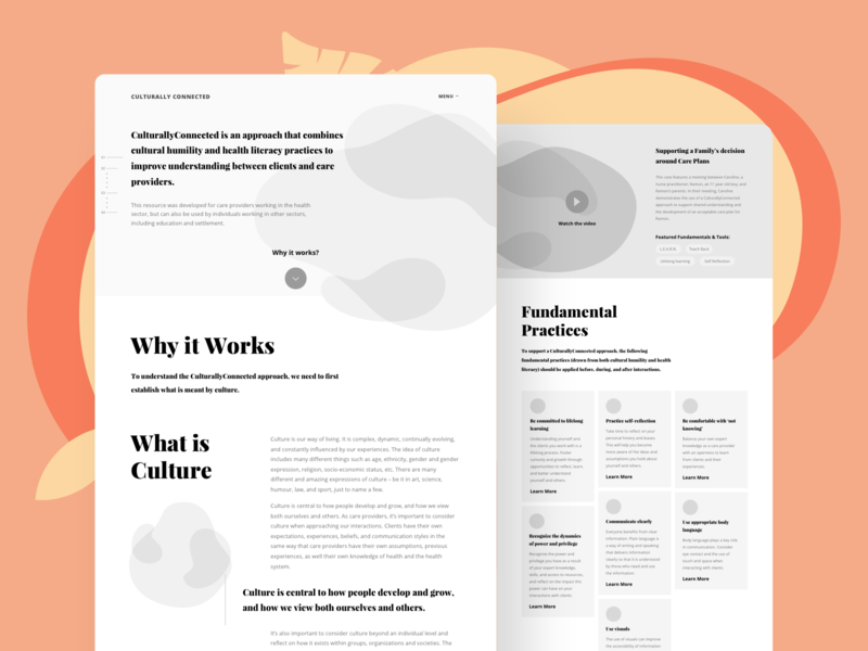 Culturally Connected Wireframes health care healthcare educational education wip wireframes ui web design