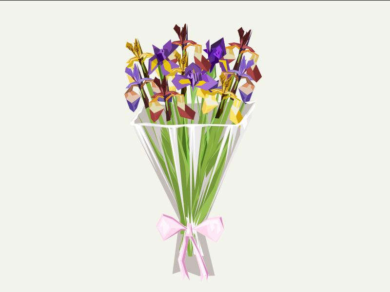 Iris bouquet flower iris design vector illustration