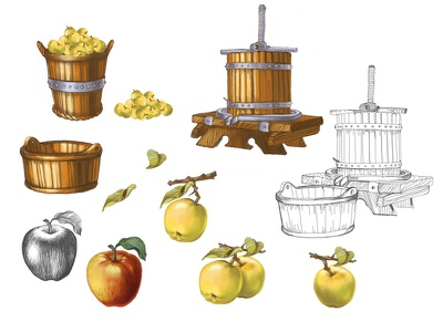 Set of different illustrations fruits apple garden vintage sketch product juice illustaration icons icon handdraw drawing