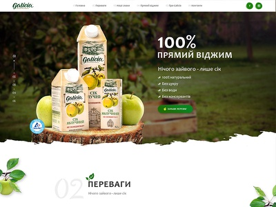 Landing page for Galicia promo company product health food web design onepage eco business promo juice landing