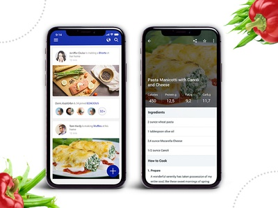 Best Food Recipe App Design and Development
