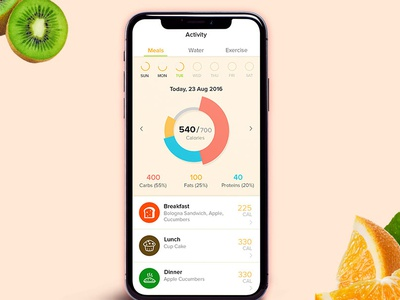 Diet Meal Plan App UX/UI Design