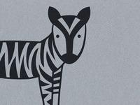 tiger stripes on a zebra
