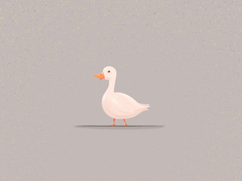 Duck Illustration art icon vector sketch animal bird cartoon character illustrator illustration kawaii cute duck