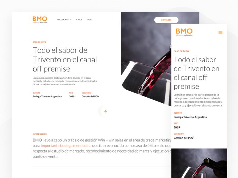Bayton BMO - Case Study btl marketing case study bmo bayton argentina website design ux indicius ui