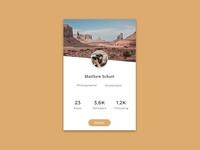 #006 Profile Screen Widget