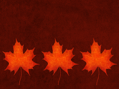 Wallpaper - Autumn Leaves