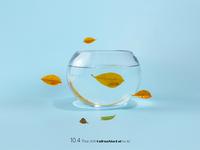 Fish life 4