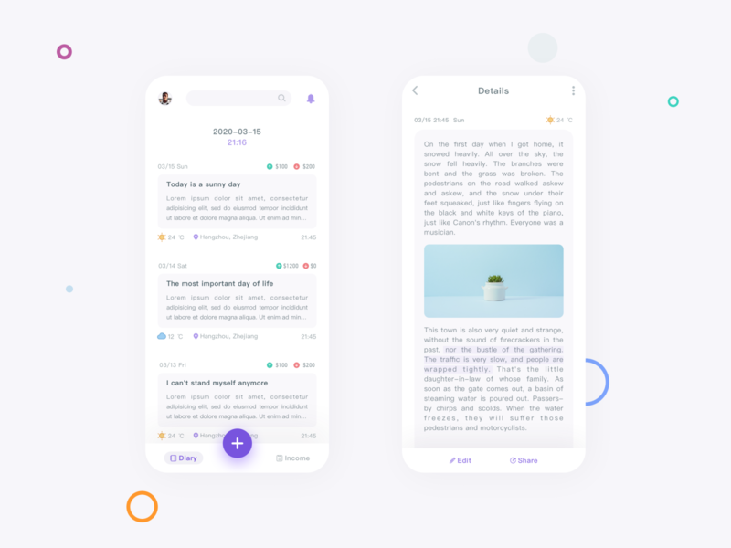 Diary&Details ux interface ui